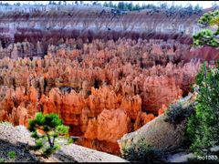 Bryce Point,Bryce Canyon N P.© by leo1383 by <b>leo1383</b> ( a Panoramio image )