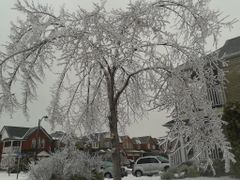frozen_canada by <b>dipu india</b> ( a Panoramio image )