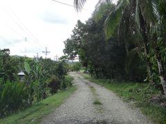 Camino en La Guaria by <b>Gino Vivi</b> ( a Panoramio image )