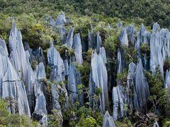Gunung Mulu & Mt Api Sarawak Nov 2013-19 by <b>erikvz</b> ( a Panoramio image )