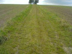 Limbach-Oberfrohna (Kaufungen) - Weg zum Hugel by <b>pixelliebe</b> ( a Panoramio image )