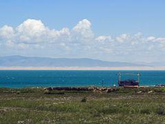 China - Qinghai Lake by <b>Carl Parker</b> ( a Panoramio image )