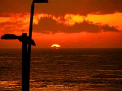 """Morning at Dee Why """"Where the sky meet the sea"""" by <b>VFedele</b> ( a Panoramio image )"""