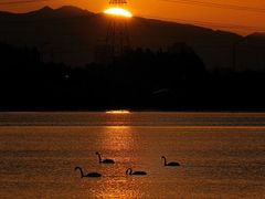 Sunset - Lined Up :-) by <b>clickNZ</b> ( a Panoramio image )
