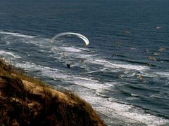 soaring with birds by <b>fuzzi 70</b> ( a Panoramio image )