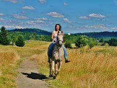 ******  The Beauty and The Beast... )  ******   (  July 31, 2011 by <b>John J. Slovinec, Sr.</b> ( a Panoramio image )