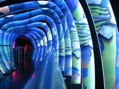 Flashing tunnel by <b>?Stefano Martelli?</b> ( a Panoramio image )