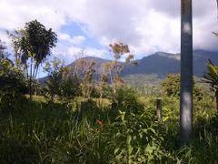 2014, Costa Rica, Puntarenas, fila costena, cerca de los angeles by <b>brian daniel baldelomar.</b> ( a Panoramio image )