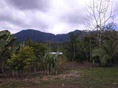 vista de la del cerro Anguciana by <b>brian daniel baldelomar.</b> ( a Panoramio image )