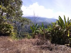 fila costena by <b>brian daniel baldelomar.</b> ( a Panoramio image )