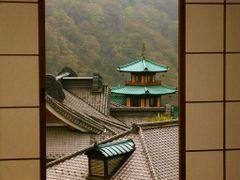 View from Fujiyama Hotel, Hakone, Japan by <b>© Greengage</b> ( a Panoramio image )