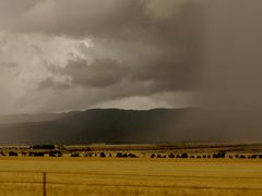 Storms near Port Augusta by <b>Izzy P</b> ( a Panoramio image )