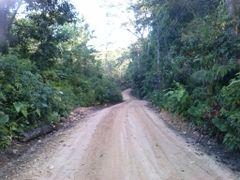 camino a los angeles  by <b>brian daniel baldelomar.</b> ( a Panoramio image )