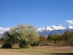 Tamga, Kyrgyzstan by <b>silwi</b> ( a Panoramio image )
