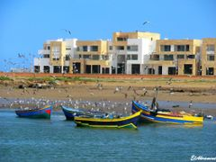 Fishing boats and seagulls, Rabat by <b>elakramine</b> ( a Panoramio image )
