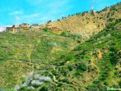 Vall?e de l'Ourika, r?gion de Marrakech  - Habitations berb?res  by <b>elakramine</b> ( a Panoramio image )