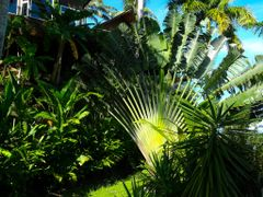 El abanico magico ---- The magic fan by <b>AnaMariaOss</b> ( a Panoramio image )