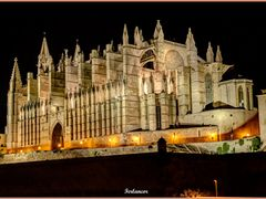Catedral  de  Palma Vista  Nocturna. (f). Para **Antoni  F**. by <b>Ferlancor Pano Yes</b> ( a Panoramio image )