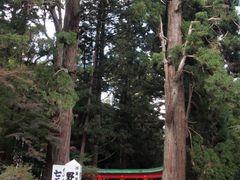 ??? / Chuson-ji temple by <b>butch24h</b> ( a Panoramio image )