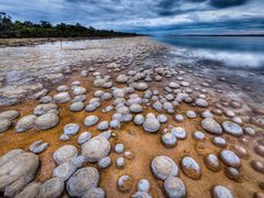 Thrombolites at Lake Clifton by <b>S?ren Terp</b> ( a Panoramio image )