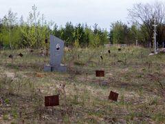 Безымянные могилы by <b>Евгений Катышев</b> ( a Panoramio image )