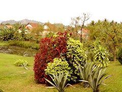 Un jard?n en Laos ----Hotel La R?sidence Phou Vao by <b>AnaMariaOss</b> ( a Panoramio image )