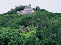 View from Structure 7 to Structure 2 in Calakmul by <b>wjaz</b> ( a Panoramio image )