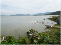 Lago de Chapala by <b>Arturo Cardenas L</b> ( a Panoramio image )