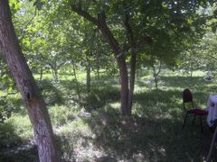 Goychay,U.Shixli,Heyetde-Iyun-2014 by <b>vugar.rahimov</b> ( a Panoramio image )