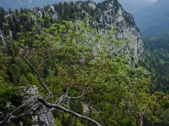 Creux du Van by <b>Harri Hofer</b> ( a Panoramio image )