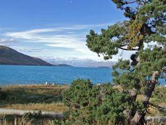 0700 Lake Tekapo as seen from village Lake Tekapo by <b>Daniel Meyer</b> ( a Panoramio image )
