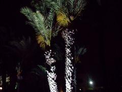 Tunisie / Monastir / hotel skanes rivage @titof by <b>titof</b> ( a Panoramio image )