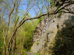 Skalnate svahy udoli Vrchlice by <b>Mirka Scharfnerova</b> ( a Panoramio image )