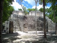 Calakmul 5 by <b>cmtzg</b> ( a Panoramio image )
