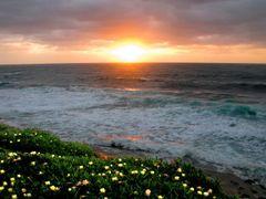 La Jolla Cove by <b>Lars Jensen</b> ( a Panoramio image )