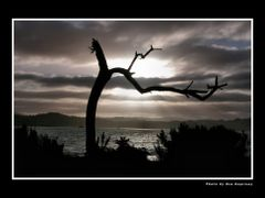 In sunset - New Zealand by <b>Eva Kaprinay</b> ( a Panoramio image )