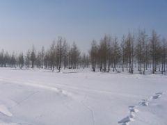 2007-2-18 10-21-07__117 by <b>???</b> ( a Panoramio image )