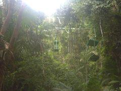 Teleferico en Gamboa Eco Resort by <b>Jose Pedro Martinez</b> ( a Panoramio image )