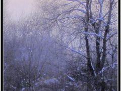 Remindful winter season-Vardar river by <b>Neim Sejfuli ?</b> ( a Panoramio image )