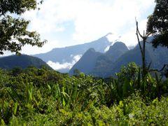 Gunung Mulu, Sarawak by <b>Lille-Magnus</b> ( a Panoramio image )