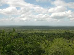 View from Danta Pyramid by <b>tropicalrambler</b> ( a Panoramio image )