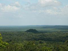 Tigre Pyramid as seen from Danta Pyramid by <b>tropicalrambler</b> ( a Panoramio image )