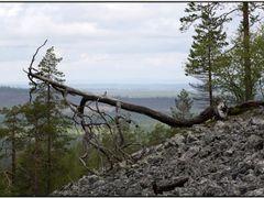 Soutaja by <b>Kimmo Lyytikainen</b> ( a Panoramio image )