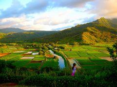 Hanalei River Valley Kauai by Jeremiah Christopher by <b>Jeremiah Christopher</b> ( a Panoramio image )