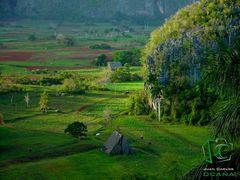 Farms (jc@NaturExperts.com) by <b>Juan Carlos Ocana Martinez</b> ( a Panoramio image )