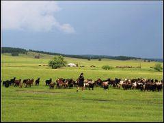 Walk in the Mongolian Plateau 003 by <b>zouzaimenggugaoyuan</b> ( a Panoramio image )