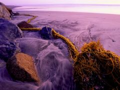 Kelp Tail at Twilight by <b>Dean Lee Uhlinger</b> ( a Panoramio image )