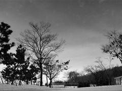 ??? by <b>Kim Gi-Ho</b> ( a Panoramio image )