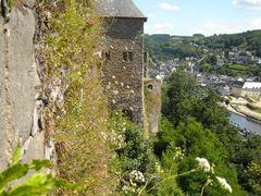 Les muurbloempjes by <b>Thei Moors </b> ( a Panoramio image )