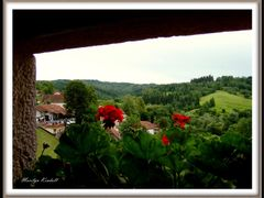 Predjama * Panorama dal Castello by <b>? © Marilyn Kendall</b> ( a Panoramio image )